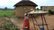 Zimbabwe wil onteigend land teruggeven aan buitenlandse boeren