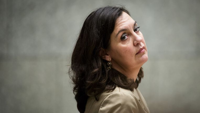 PvdA-Kamerlid Marith Volp. Beeld ANP