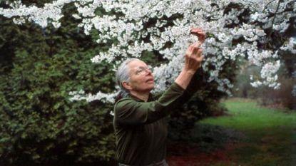 Arboretum eert grondlegster Jelena De Belder vijftien jaar na haar dood