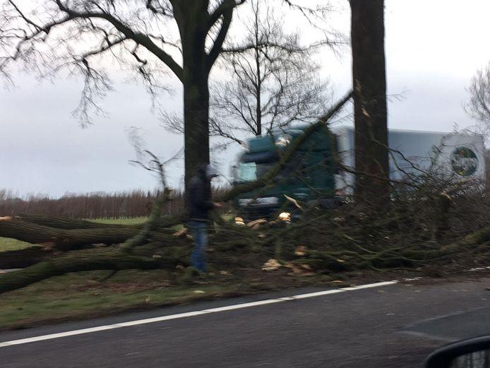 Een groot stuk van een boom is op de N65 op een auto gevallen.