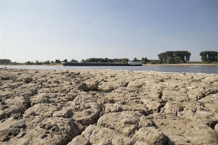 Vorig jaar was het ook kurkdroog. De bodem van de oever van de Rijn was gescheurd door de droogte.