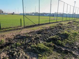 """Oude populieren langs voetbalveld SK Nossegem gekapt: """"Voorkomen dat boom op voetballertje valt"""""""