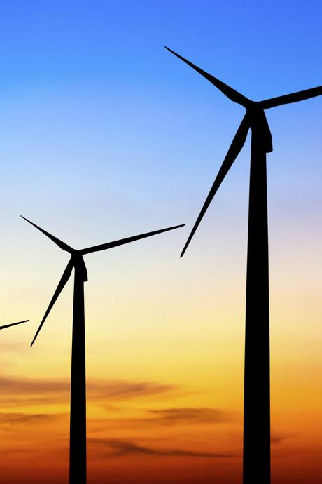 Hoogleraren: Toon moed en leiderschap voor groene economie