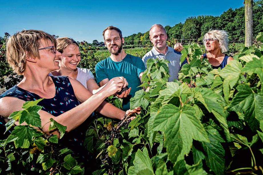 De familie Franken uit Bergen op Zoom schrijft om beurten over het wel en wee op hun fruitteeltbedrijf.