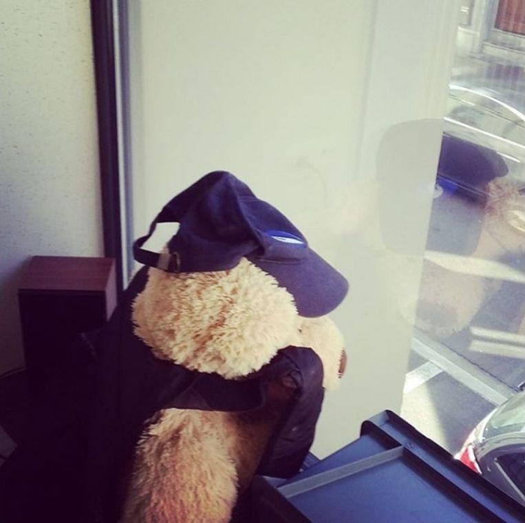 Achter het raam van het politiecommissariaat in de Denderstraat zit ook een beer.