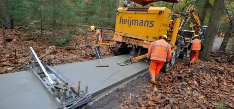 Bossen vol beton: reptielen op de Veluwe moeten vrezen voor hun leven