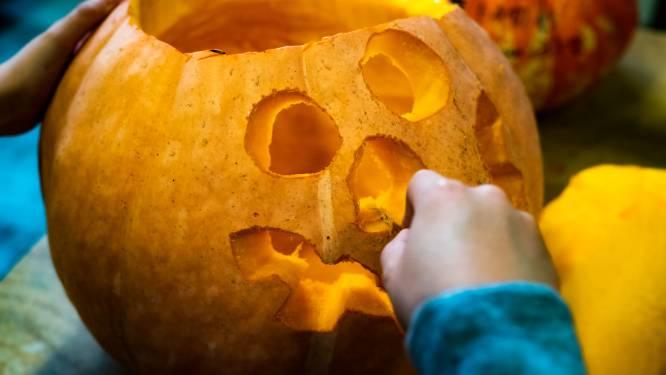 """Versier je huis met Halloween: """"Zorg voor een lichtpuntje in deze donkere tijden"""""""