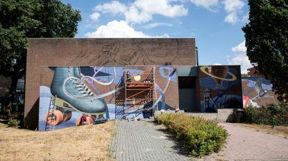 Limburghal krijgt kunstzinnig jasje