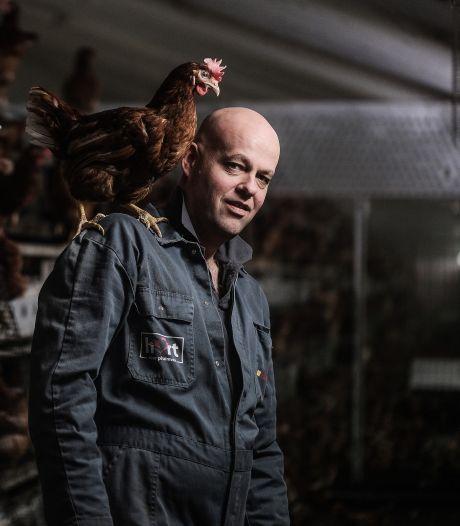 Zorgen om vogelgriep: deze kippenschuur krijgt een soort 'mondkapje'