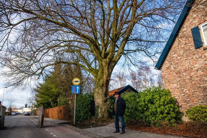 Jan Brands bij de monumentale boom in Acht.
