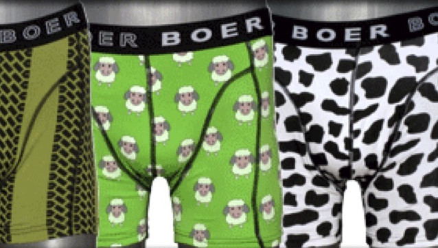 © b-boer.nl