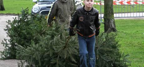 Kinderen mogen toch de straat op om kerstbomen in te zamelen in Brummen