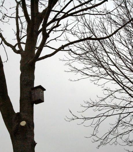 Erf in buitengebied Breda wordt gezellig voor leuke beestjes