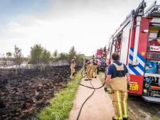 Brand op Strabrechtse Heide in Heeze onder controle - brand is aangestoken