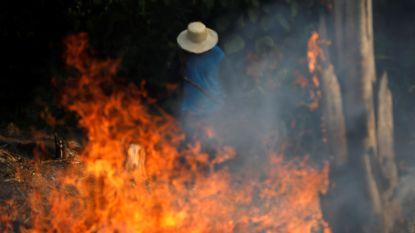 Amazonewoud staat in brand: alleen al dit jaar 72.000 vuurhaarden, president Bolsonaro knijpt oogje dicht