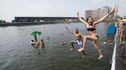Antwerpenaren springen Droogdokken in tijdens Big Jump
