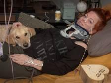 Eva, Ilona en Anne zijn 24/7 aan bed gekluisterd, hun laatste strohalm is een Spaanse dokter: 'De euthanasieverklaring ligt al klaar'