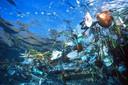 De plasticsoep in de oceaan.