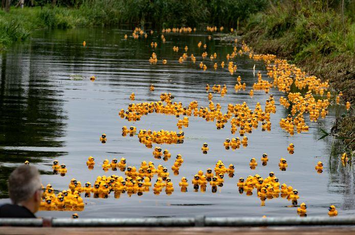 Duck van Toorrace zondag in Valkenswaard.