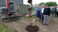 Proefstation investeert 7,6 miljoen euro in nieuwe serre voor onderzoek naar groenteteelt