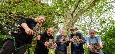 Wereldboom in 't Wasven: Hart van hout voor Gevlekte Zuiderling