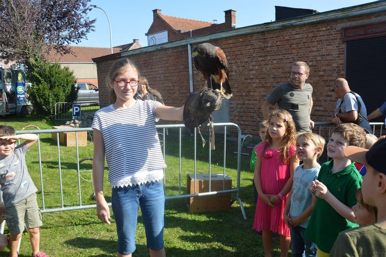 De roofvogeldemonstratie kon op veel interesse van de kinderen rekenen.