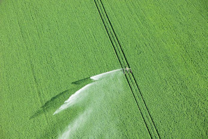 Het beregenen van landbouwgrond bij droogte