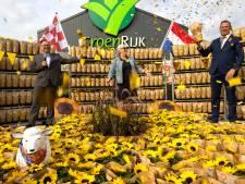 Bijna 2000 zonnebloemen voor zieken in de regio