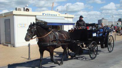 """Wanneer mogen de paardenkoetsen weer op pad? """"Wij lonken vooral naar de heropening van de horeca"""""""