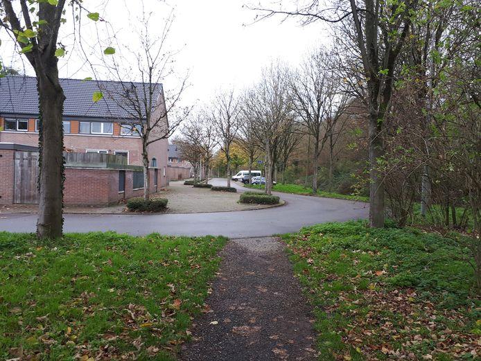 De Europalaan in de wijk Goese Polder.