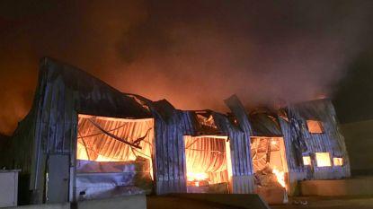 """Zaakvoerder wafelbakkerij Dimabel ziet levenswerk verwoest door brand: """"Ik kon niks meer redden"""""""