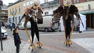 Op zoek naar nieuw...verenkleed? Grote vogels komen 'Smakelijk Shoppen'