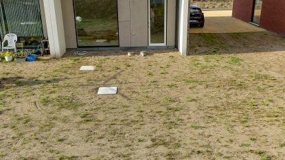 Geen groen gazon? Tuinier draait ervoor op: tuinaannemers scheuren broek aan hittegolf