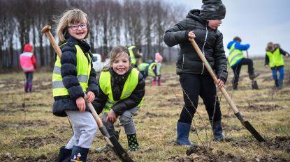 Leerlingen helpen handje bij aanplanten 4.700 extra bomen