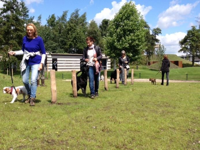Slalommen met je hond op het nieuwe hondenveldje in Uden-Zuid.