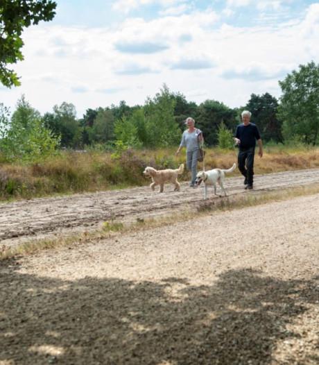 Landerd maakt drie nieuwe uitlaatgebieden voor honden in de Maashorst