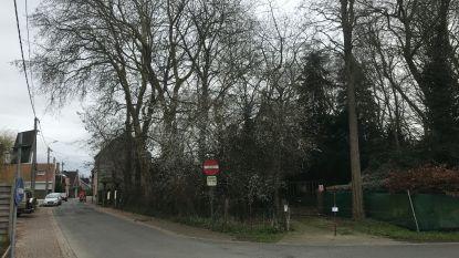 Provincie moet beslissen over bouw van 21 flats in 'Bos van Smisse'