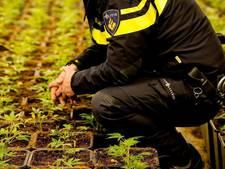 Woning Loenermark in Noord gesloten na vondst wietplantage