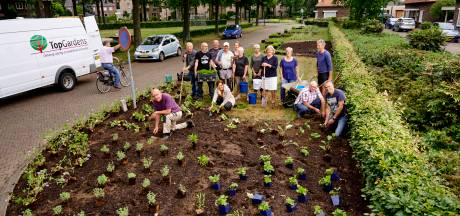 Laarbeek kon een jaar lang schitteren in het groen