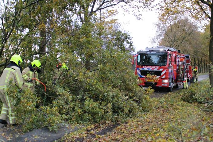 De boom in het buitengebied van Wijchen is door de brandweer van de weggehaald.