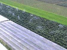 Boeren krijgen subsidie voor waterbesparing