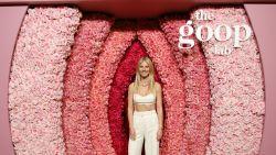 Gwyneth Paltrow frustreert wetenschap met dubieuze therapieën in Netflix-serie