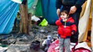 Vlaanderen start met traumabegeleiding jonge vluchtelingen