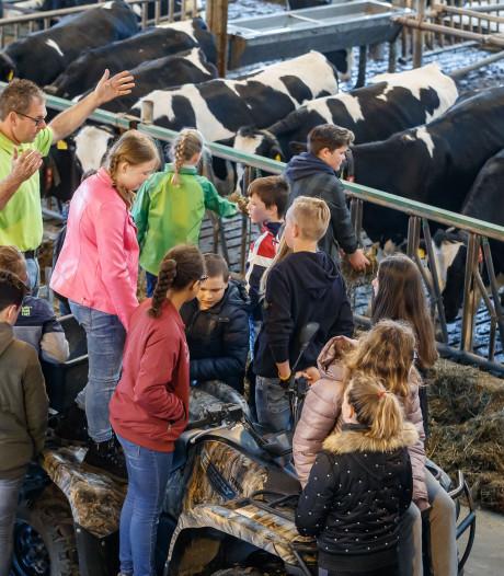 Melk komt niet uit pak: kinderen lopen vol verbazing door de stal in Dinteloord