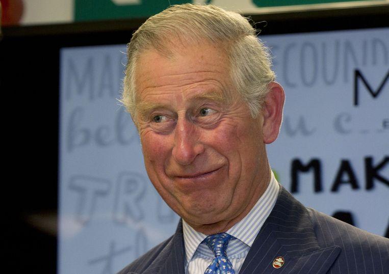 Volgens critici schond prins Charles met de brieven aan de Britse regering het neutraliteitsprincipe van een toekomstig monarch.