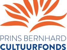 Cultuur en natuur uit Twente krijgt financieel steuntje van Cultuurfonds Overijssel