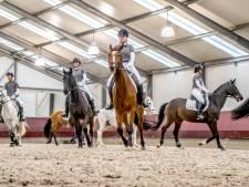 Actieplan voor meer paardensport in regio: Veel meer evenementen en onderzoek