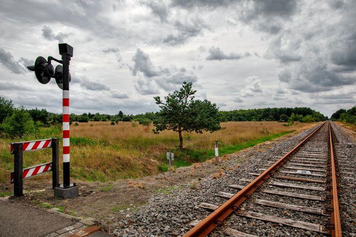 De IJzeren Rijn loopt in Brabant bij Budel door natuurgebieden van bos, heide en zandverstuivingen.