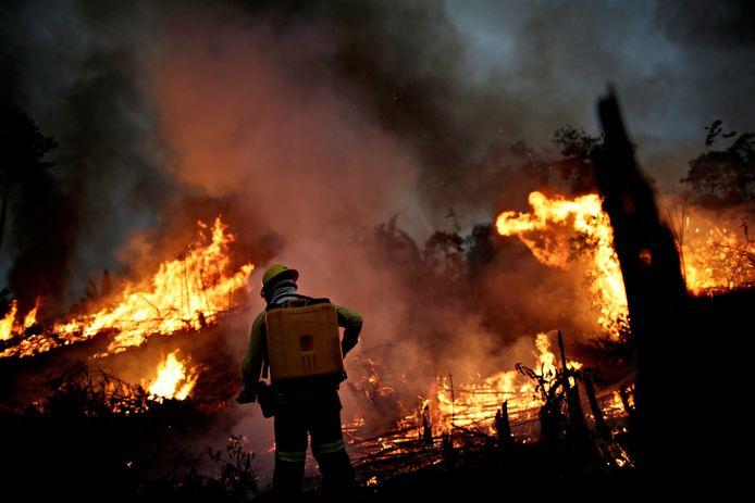 Een brandweerman probeert een brand in het Amazonewoud onder controle te krijgen. De foto werd vorige maand gemaakt.