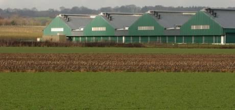 Groesbeek krijgt een melkfabriek met melk uit eigen streek